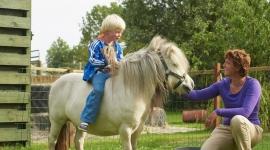 kinderfeestje-farmcamps-fleur-stables-noord-holland-2-klein