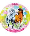 kinderfeestje paarden