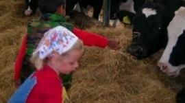 kinderfeestje-op-de-boerderij-in-de-oude-melkput-kalfjes-voeren-koeien-melken-hooizolder-boer-en-boeri-helpen-kinderfeestje-boerderij-noord-holland-kinderfeestje-in-de-oude-melkput-1