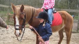 kinderfeestje-ponyrijden-2-klein