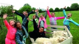 kinderfeestje schapendrijven 1