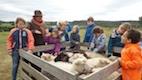 kinderfeestje schapendrijven 2