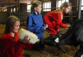 boerderijfeestje, kinderfeestje op de boerderij