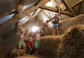 Kinderfeestje op de boerderij, boerderijfeestje, boeren kinderfeestje, partijtje op de boerderij, kinderfeestje in Zeeland, FarmCamps, FarmCamps kinderfeestje, FarmCamps
