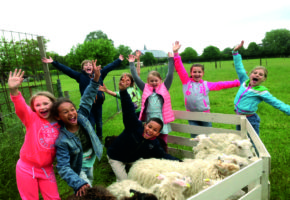 kinderfeestje schapendrijven